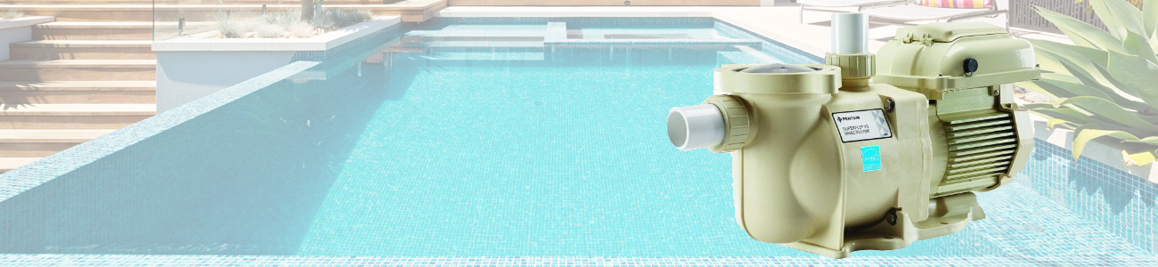 Swimming pool pumps filters for American swimming pool systems