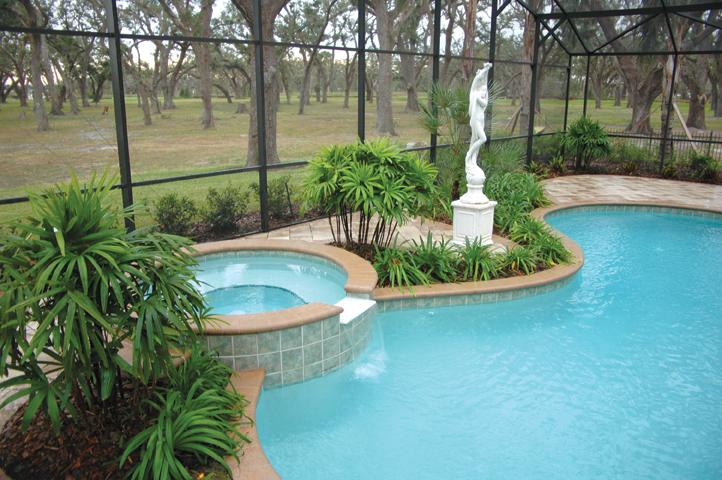 Swimming Pools With Spas Orlando Fl Custom Pool And